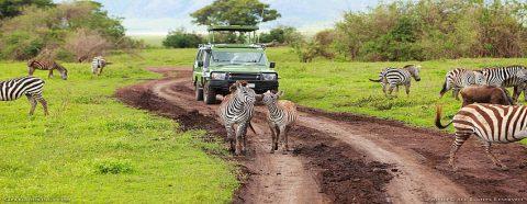 Tourism License In Tanzania